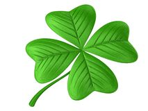Four leaf clover isolated on white Royalty Free Stock Photography