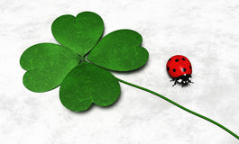 Four-leaf clover and a ladybug Royalty Free Stock Photo
