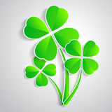 Four-leaf clover for luck happiness green three Stock Images
