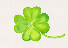 Four-leaf clover painting. Watercolor painting of a four-leaf clover, symbol for luck Stock Photos