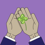 Four leaf clover Stock Image