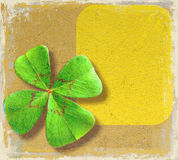 Four-leaf clover on paper Stock Images