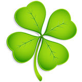 Four-Leaf Clover Stock Photography