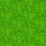 Four leaf clover seamless pattern. Lucky spring background with shamrock for textiles, interior design, book design Royalty Free Stock Photography