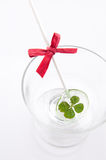Four leaf clover sugar stick Royalty Free Stock Photography