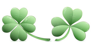 Four leaf clover and three leaf clover icons. Four leaf clover and three leaf clover over white Royalty Free Stock Photos