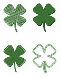 Four Leaf Clover Variety Stock Photo