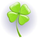 Four leaf clover. Vector illustration. St. Patrick's day symbol Stock Photography