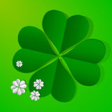 Four leaf clovers. On green background Royalty Free Stock Images