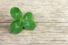 Four-leaf lucky shamrock, clover on old retro vintage wooden background with copy space royalty free stock photography