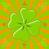 Four leaf shamrock Stock Photography