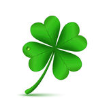 Four leafed clover. Four leaf green clover. St Patricks day icon and good luck symbol. Vector illustration of Stock Images