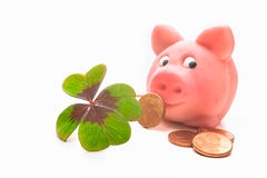 Four-leafed clover and piggybank Stock Photos