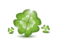 Four-leafed clover Royalty Free Stock Image
