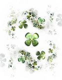 Four leafed clovers on white,  shamrock. Abstract illustration of a  four-leafed clovers field on white background Royalty Free Stock Image