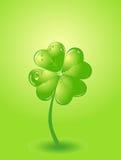 Four-leafs clover Royalty Free Stock Photos
