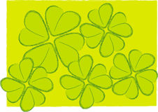 Four leafs clover Royalty Free Stock Image