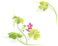 Four-leave clover vector frame Stock Photography
