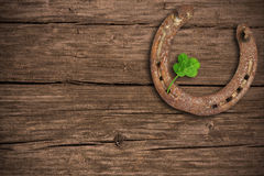 Four-leaved clover and a horse shoe Stock Image