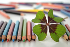 Four leaves clover and colored pencils Stock Image