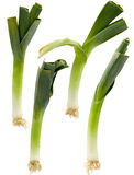 Four Leeks Stock Photo