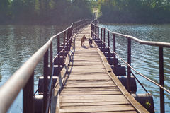 Four-legged friends. A couple of dogs running on a wooden floating bridge, laid across a small river village. Pit village, Volgograd region, Russia, September 23 Royalty Free Stock Photos