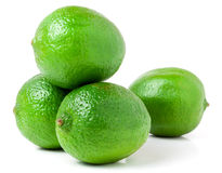 Four lime isolated on white background close up Royalty Free Stock Photo