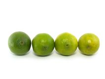 Four limes Royalty Free Stock Image
