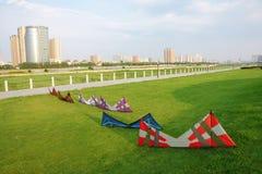 Four line kites on grass Royalty Free Stock Photos