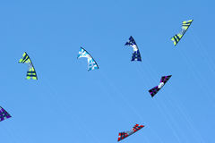 Four line kites Royalty Free Stock Image