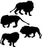 Four lion silhouettes Royalty Free Stock Images
