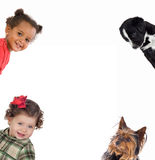 Four little funny: two babies girls and two puppie Stock Photography