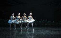 Four little swan-ballet Swan Lake. In December 20, 2014, Russia's St Petersburg Ballet Theater in Jiangxi Nanchang performing ballet Swan Lake Stock Photography