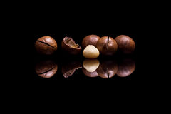 Four macadamia nuts on black background Stock Photo