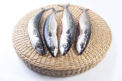 Four mackerels fish over rattan surface Royalty Free Stock Photos