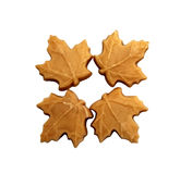 Four maple sugar candies Royalty Free Stock Photo