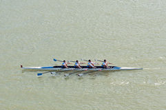Four men rowing on Danube river Royalty Free Stock Photos