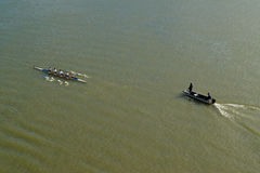 Four men rowing on Danube river Royalty Free Stock Photo