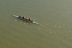Four men rowing on Danube river Stock Image