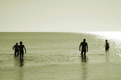 Four men in water Royalty Free Stock Photos