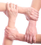 Four mens hands. Joined together on white royalty free stock photography