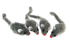 Four mice Stock Photography