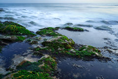 Four Mile Beach, California Stock Photography