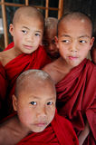 Four monks, Myanmar. Young monks in Namshan monastery Royalty Free Stock Photo