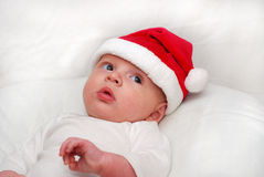 Four month old santa royalty free stock image