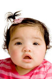Four months old baby. Laying on carpet over white royalty free stock photo
