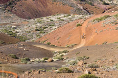 Four mountain-bike riders on extreme volcanic road Stock Images