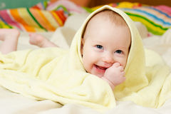 Four mounth infant Stock Photography