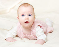 Four mounth infant Stock Image