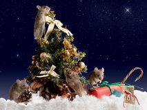 Four mouse decorates the Christmas tree by night on background starry sky Royalty Free Stock Images